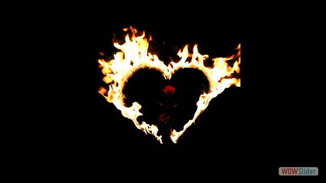 4 Herz mit Rosen